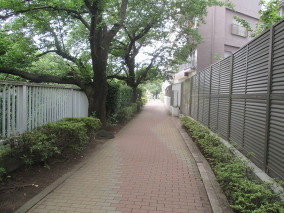 7月11日ひがしのおもしろスポットぶらぶら歩き~神田川四季の道