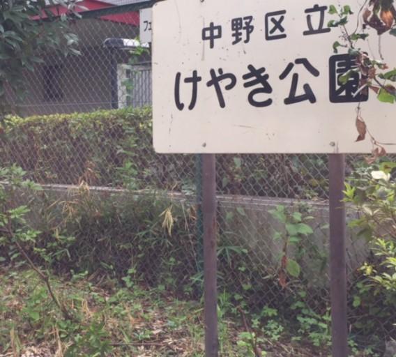 20150829ひがしのクリーンウォーク~けやき公園
