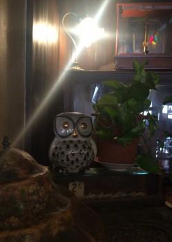 高円寺ルック商店街の喫茶店『七ツ森』の店内装飾